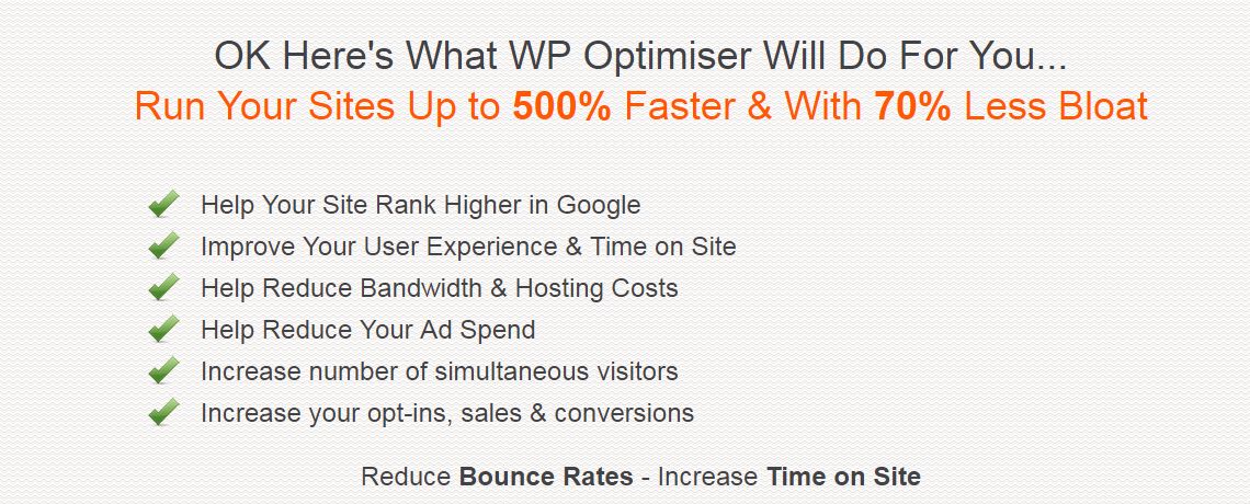 WP optimiser review